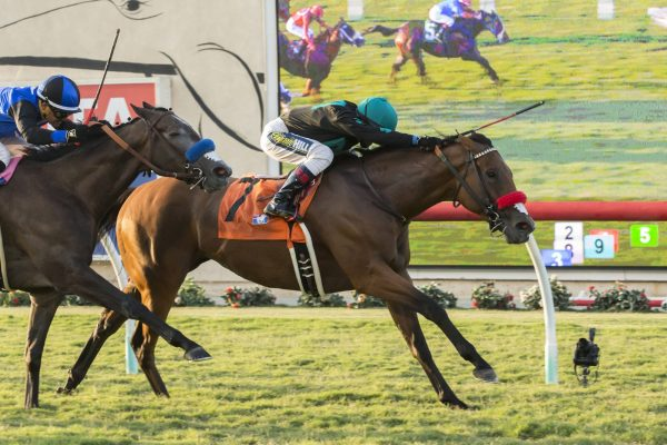 GO ON MARY Leads the Way in Del Mar's Daisycutter