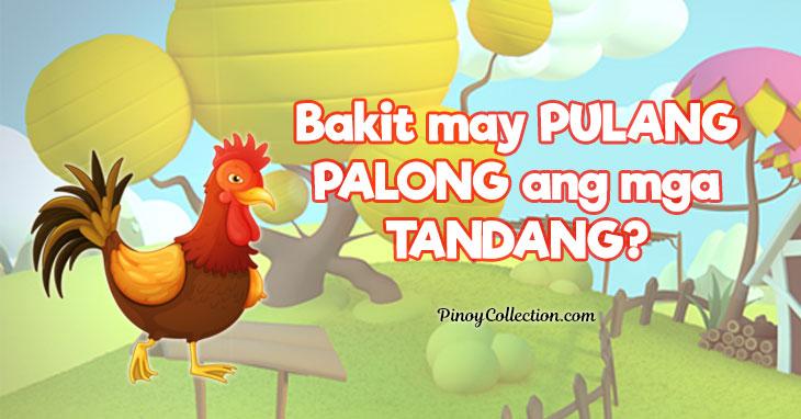 Bakit may Pulang Palong ang mga Tandang?