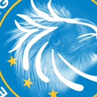 A Closer Look at the BSP's new seal