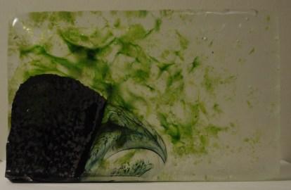 20141025-Glass Crow 1