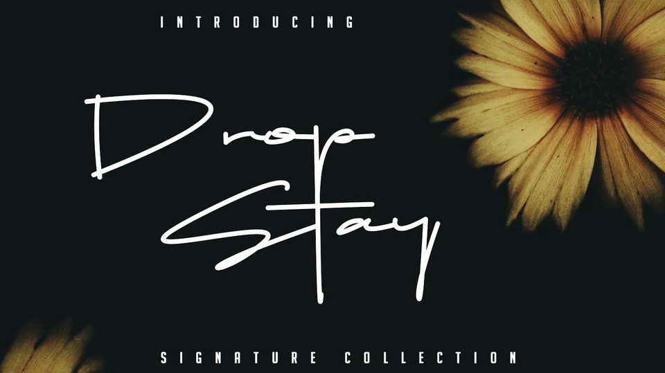 Download 10 Latest Free Signature Fonts For Personal Use · Pinspiry