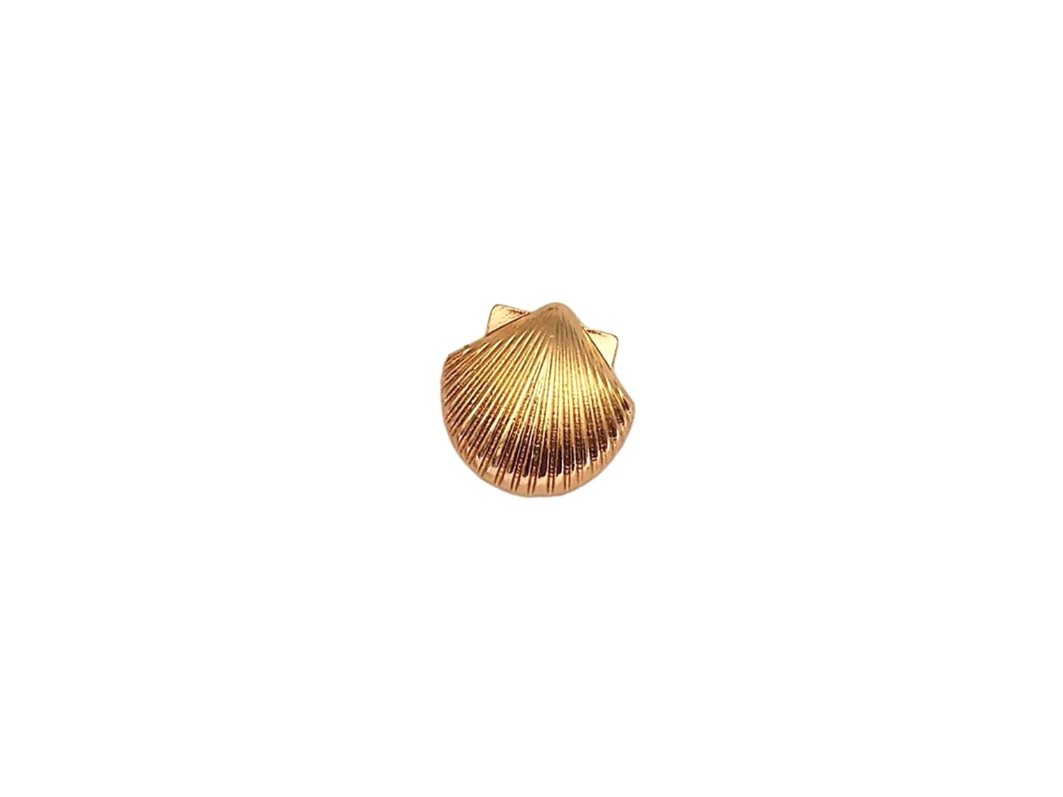pin's coquillage
