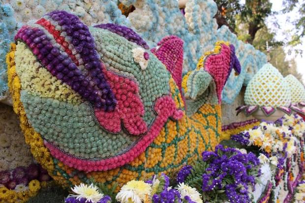 fete-des-fleurs-chiang-mai (5)