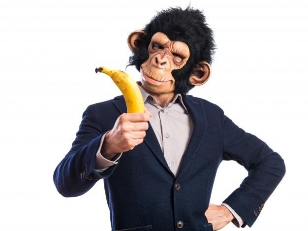 Pengertian dan Bahaya Monkey Business