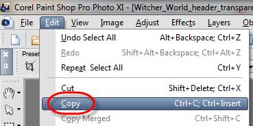 PaintShopPro_Copy