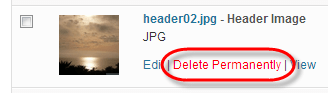 WordPress Media Library Delete