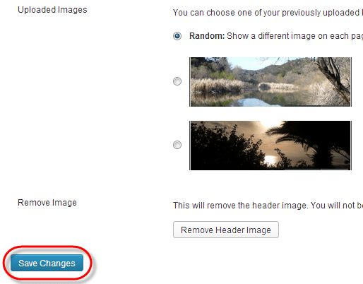 WordPress Theme Header Change Save Changes