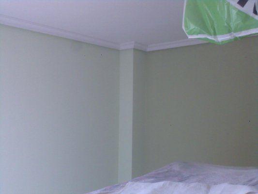Plastico Color Verde en Salon Canillejas (3)