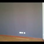 Pintura Plastica Color Gris Claro y Gris Oscuro 8