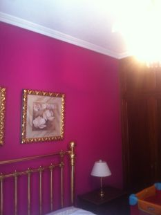 Plastico color FUCSIA (4)