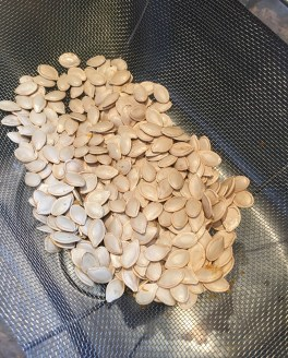 pumpkin-seed-recipe-1