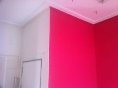 Esmalte Pymacril Color Rosa Frambuesa (15)