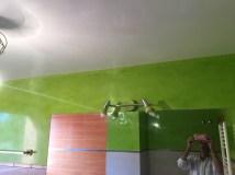 Estuco Mineral Blanco y Estuco Veneciano Verde en Wc (1)