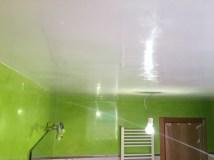 Estuco Mineral Blanco y Estuco Veneciano Verde en Wc (3)