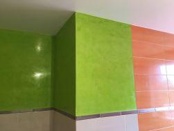 Estuco Mineral Blanco y Estuco Veneciano Verde en Wc (8)
