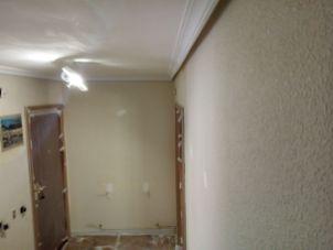 Gotele plastificado en paredes (1)