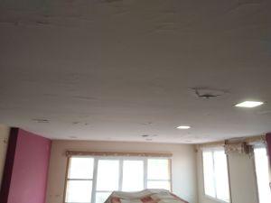 Estado techos Salon y entrada (2)