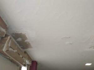 Estado techos Salon y entrada (6)