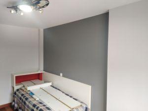 Habitacion 2 Plastico color gris claro y esmalte gris oscuro (6)