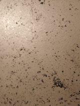 Efecto Metalizado Madreperla 08 (37)