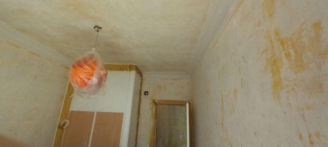 Aceite de linaza en techos y paredes (19)