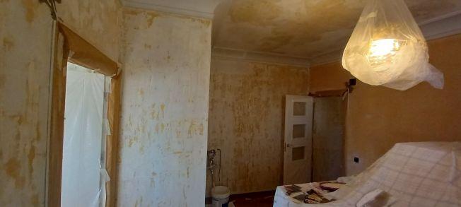Aceite de linaza en techos y paredes (9)