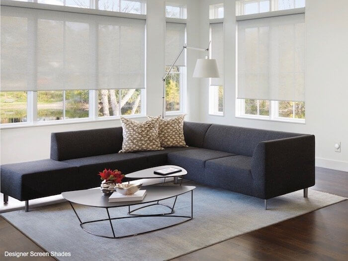 Designer Screen Shades - Barista in a Sitting Area
