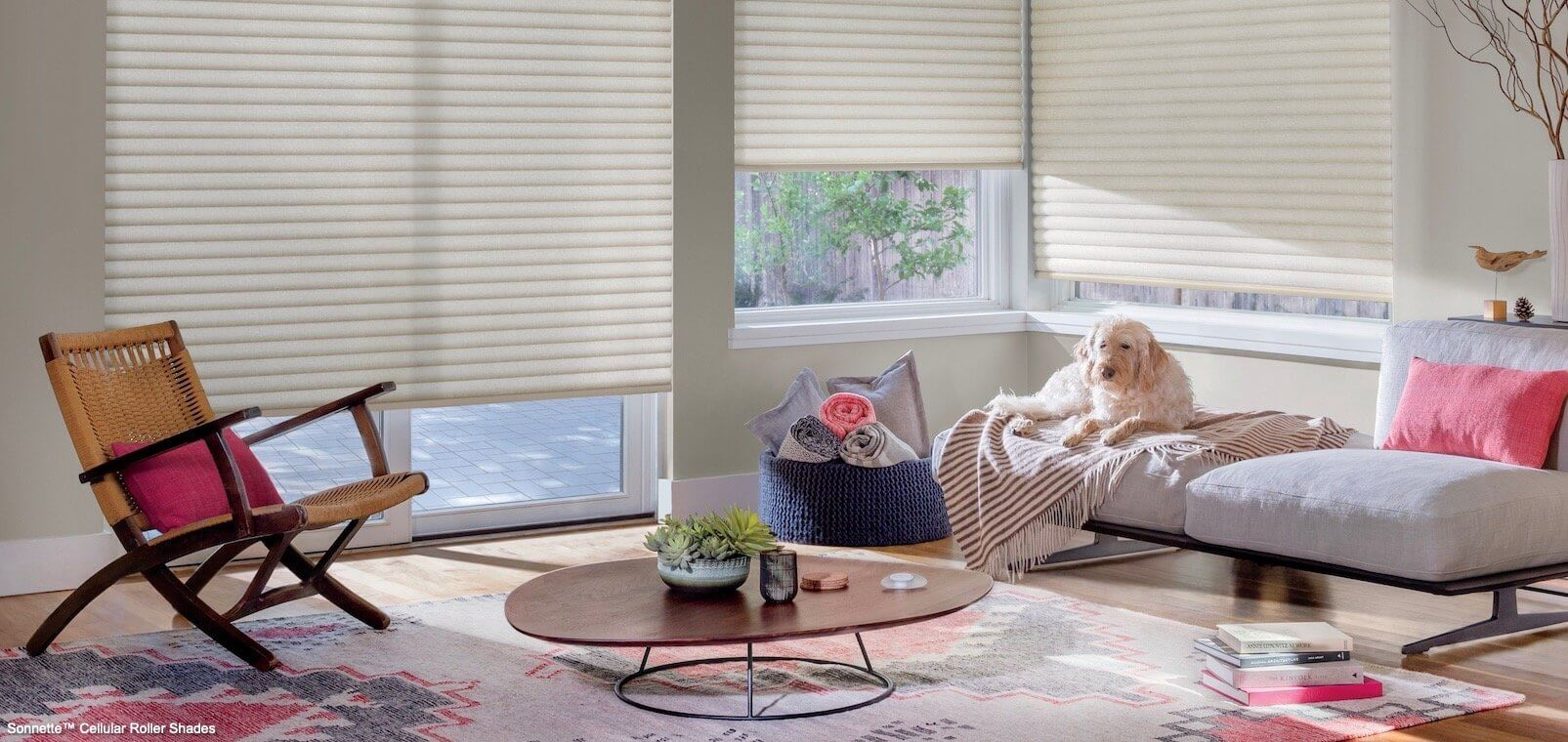 Sonnette Cellular Roller Shades - PowerView- Textura - Living Room