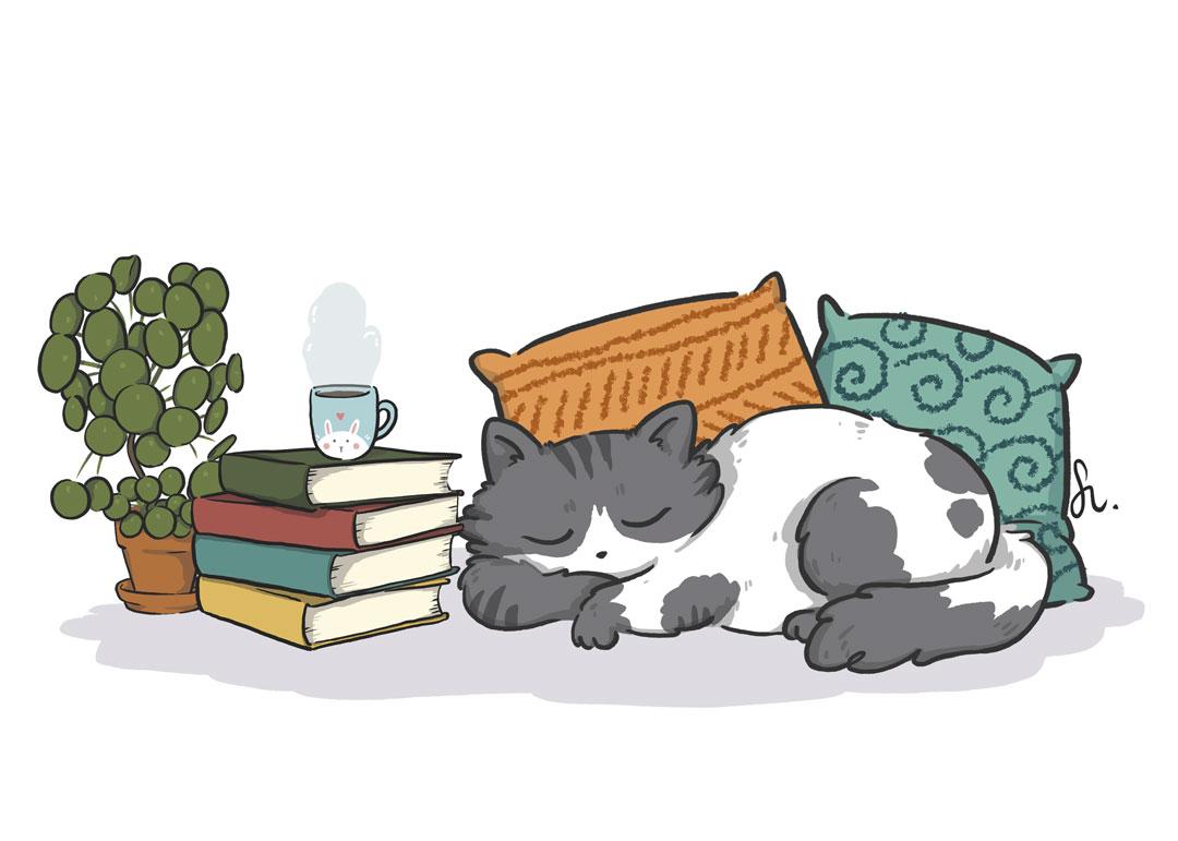 ilustracion-pipasdegirasol-gato-conjunto