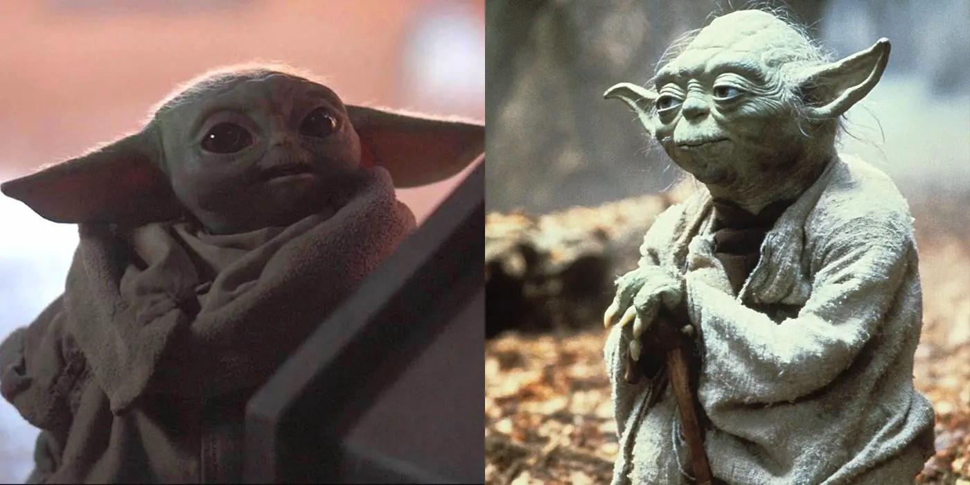 Star Wars | Tudo o que sabemos sobre a espécie do Yoda