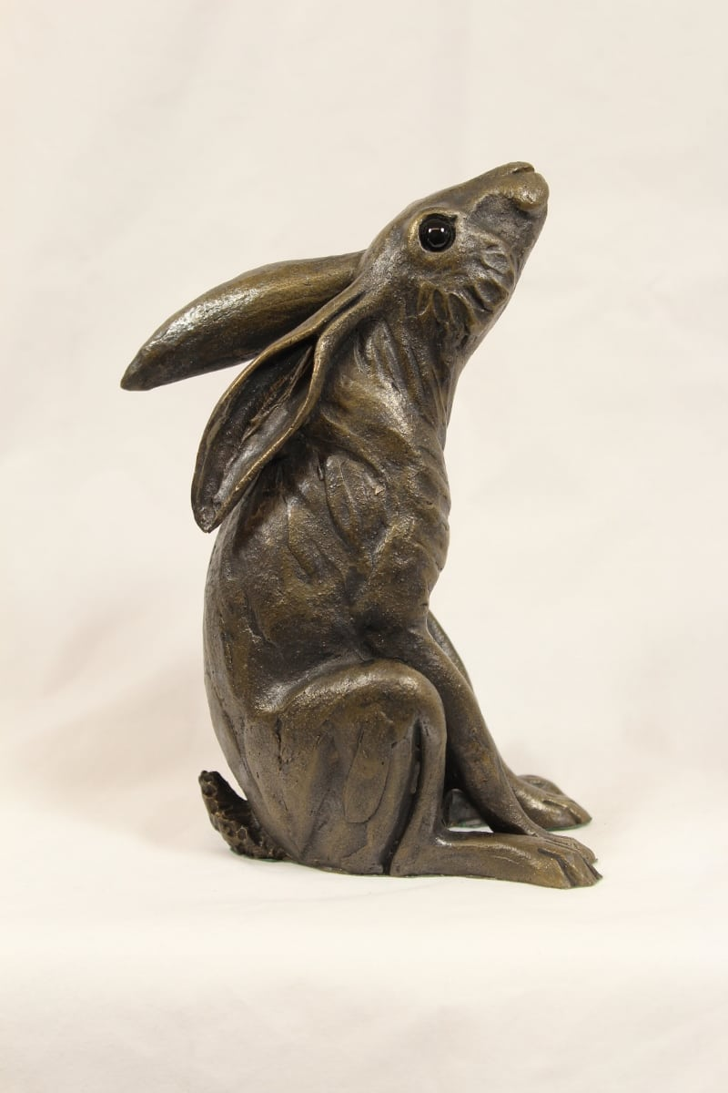 Moongazing Hare