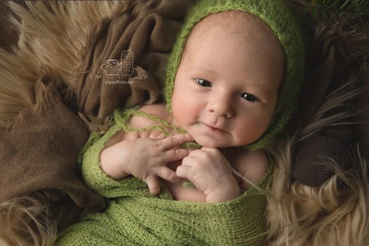 nyfødtfotografering, babyfotograf, nyfødt gutt, baby bilder