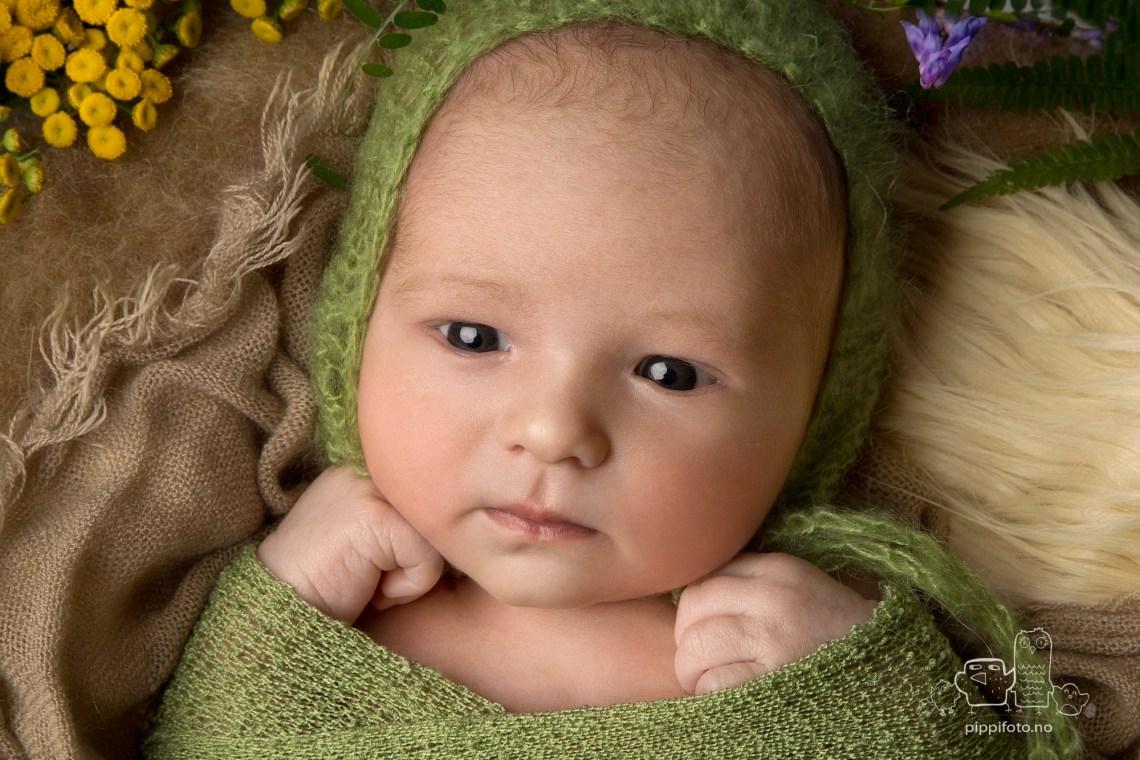 nyfødtfotografering, nyfødtfoto, babybilder, nyfødt gutt, nyfødt klær