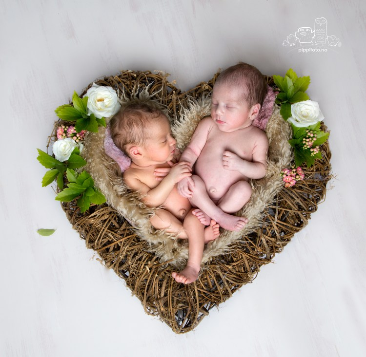 nyfoedtfoto-babyfoto-nyfoedtfotograf-babyfotografering-tvillinger-gravidfoto