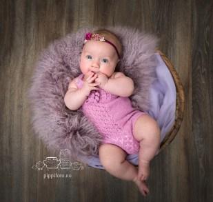 babyfotografering Oppegård