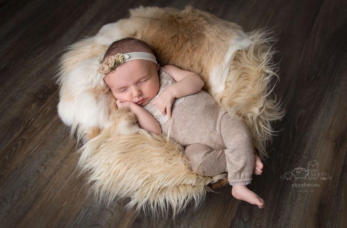 nyfødtfotografering-oppegård-fotograf-Kolbotn-follo