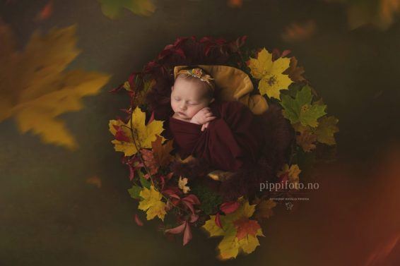 nyfødtfotografering-art-fotograf