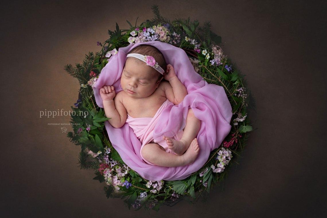 nyfødtfotografering-oslo-babyfotografering