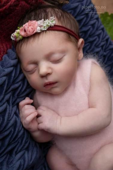 nyfødtfoto-nyfødtbilder-fotograf-oslo-fotograf-Kolbotn-babyfotografering-babybilder-nyfødtfotograf