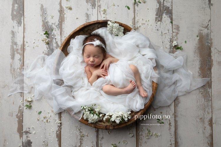 nyfødtbilder-nyfødtfotografering-oppegård-kolbotn