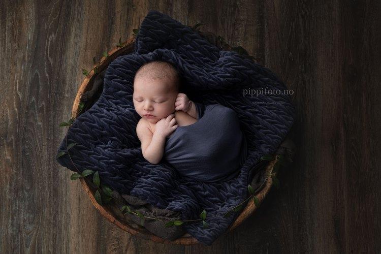 kurv_Sia-nyfødtfotografering-nyfødtbilder-babyfotograf