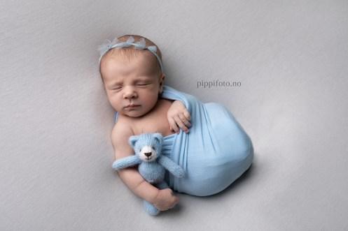 nyfødtfotografering-pris-oslo