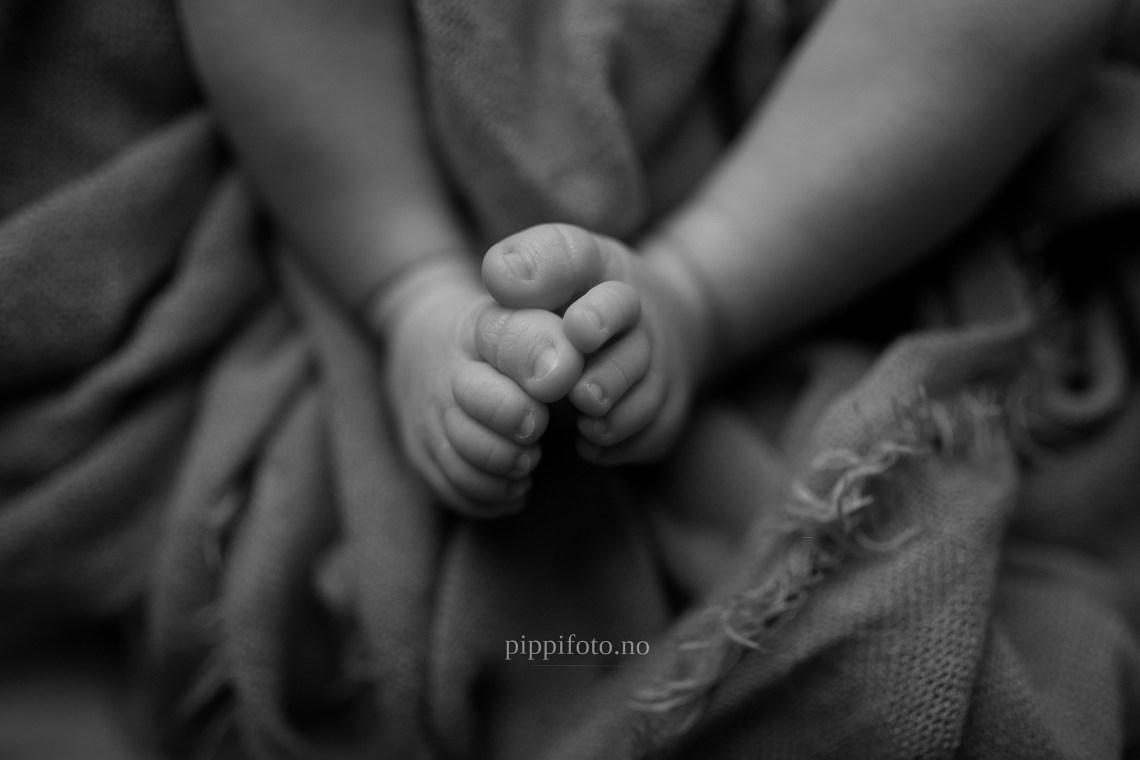 nyfødtfotografering-babyfotograf-Akershus-Oslo