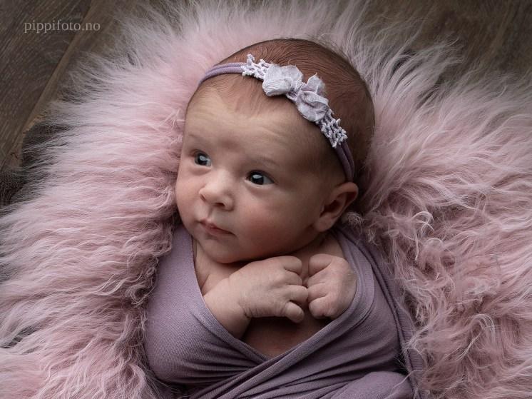nyfødtfotografering-Oslo-nyfødtfotograf