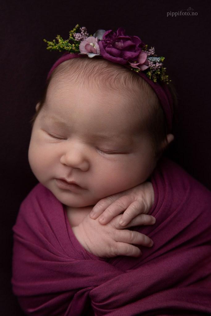 nyfødtfotografering Oslo Viken