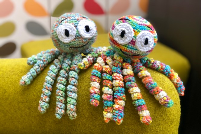 33ac4246d39 Meet Olly and Olive Octopus. They are two siblings who are looking for a  new home. They are quite cheeky little creatures! Always getting into  pickles