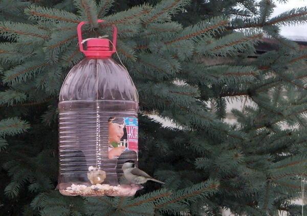 Поделки на даче своими руками из пластиковых бутылок фото ...