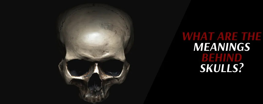 Skull Meaning: What does the skull symbolize?