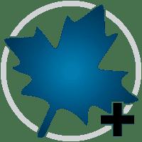 Maplesoft Maple 2020 Crack