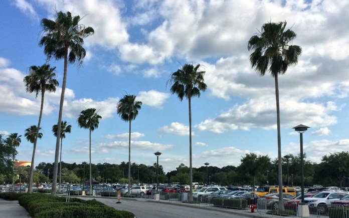 Walt Disney World Parking Fees Have Increased Pirates